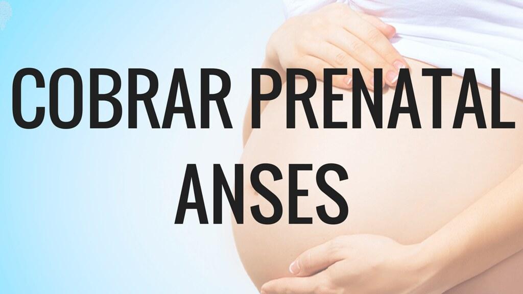 Cobrar el Prenatal en ANSES