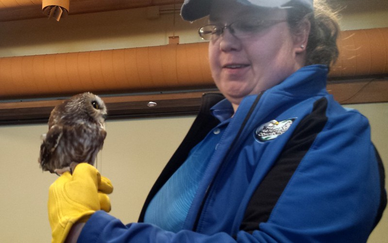 A woman smiling while holding a very small owl on her gloved hand, the bird facing her.