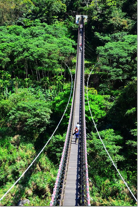 福美吊橋 3