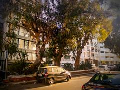 sunny day in Casablanca