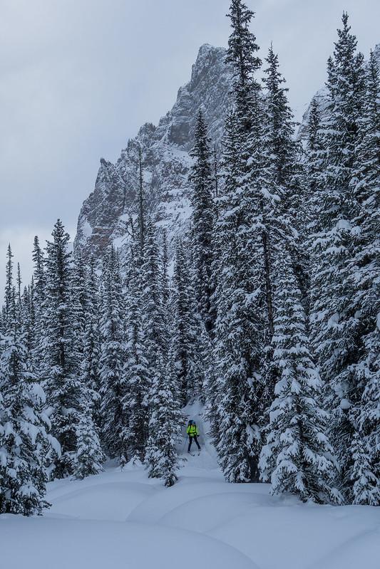 Back country ski