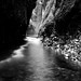 Oneonta Gorge by jim peterson2012