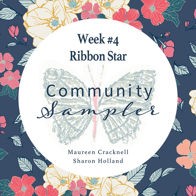 Community Sampler Block No.3 -- Ribbon Star