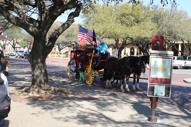 032218 FT Worth Stockyards (48)