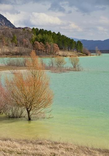 paesaggio landscape windy light sooc trees lake colours dof planes