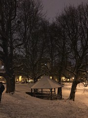 L'abris rustique et la marronniers sous l'a neige le soir