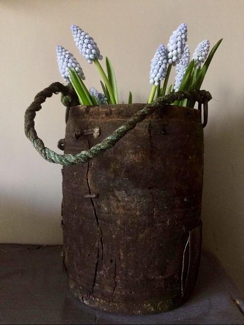 Pot sober voorjaarsbloemen