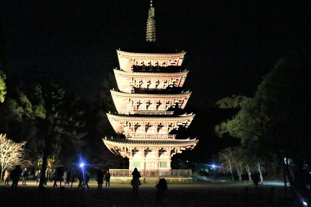 daigoji-koyo013