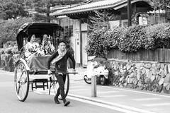 Japan Random Scenes