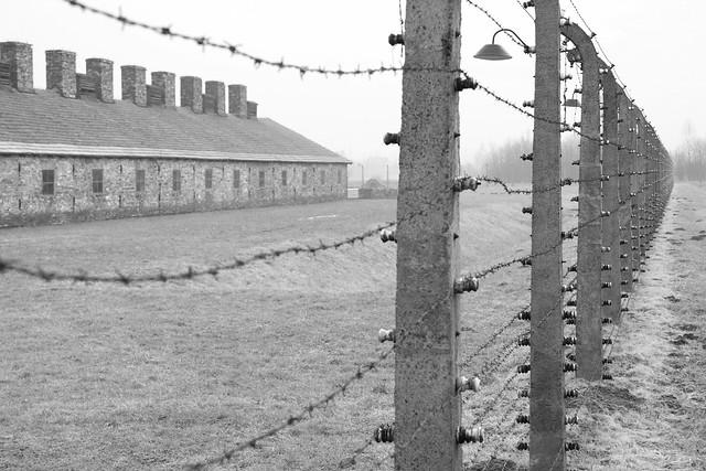 Birkenau Fence