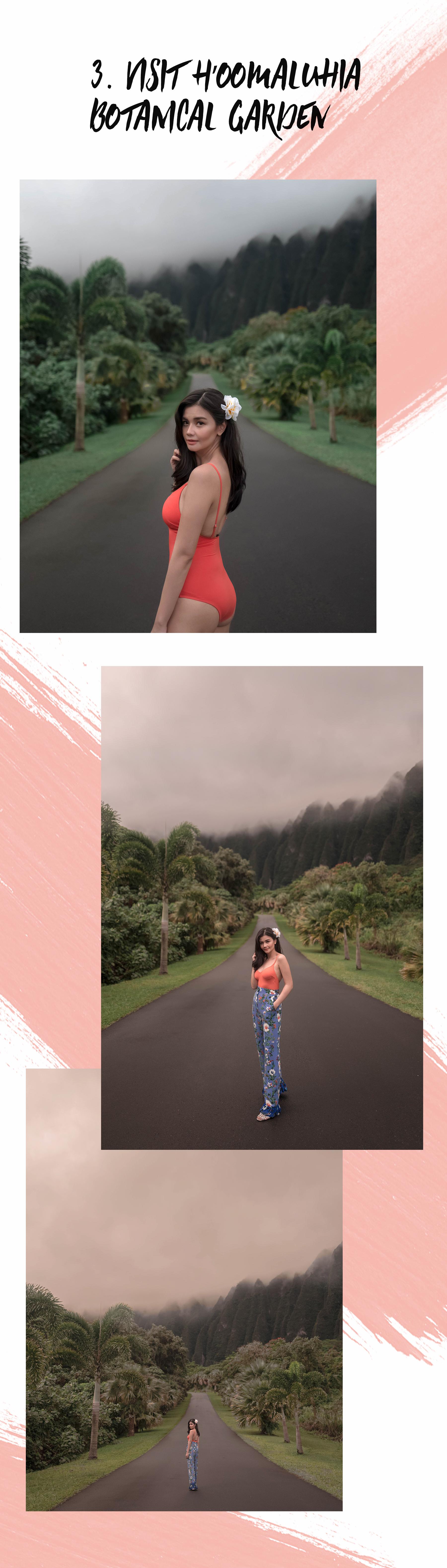 VV Hawaii 3