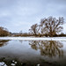 More Winter in March by Paul Kaye