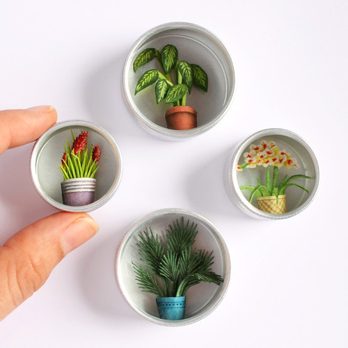 3D Watercolor Illustrated Plants in Tins