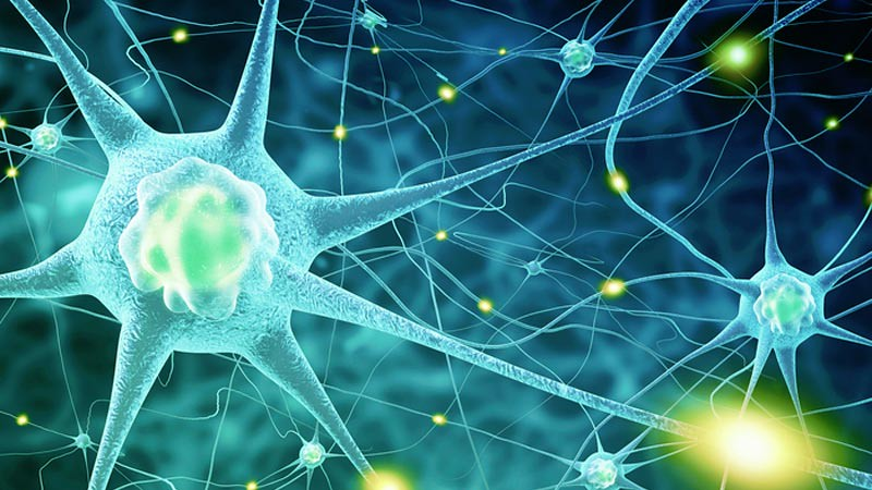 Membekukan saraf menjadi salah satu cara yang baru diuji untuk menurunkan berat badan.
