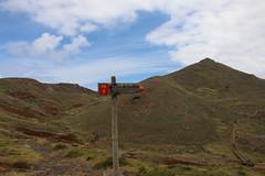 Madeira 2016 - 6.Tag, Halbinsel Sao Lorenco