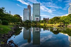Look Across The Water   Tokyo, Japan