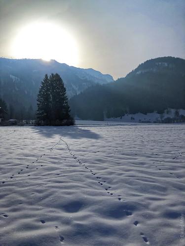 Schwendt / Tyrol