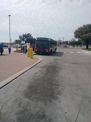 VIA Metro San Antonio NABI 903
