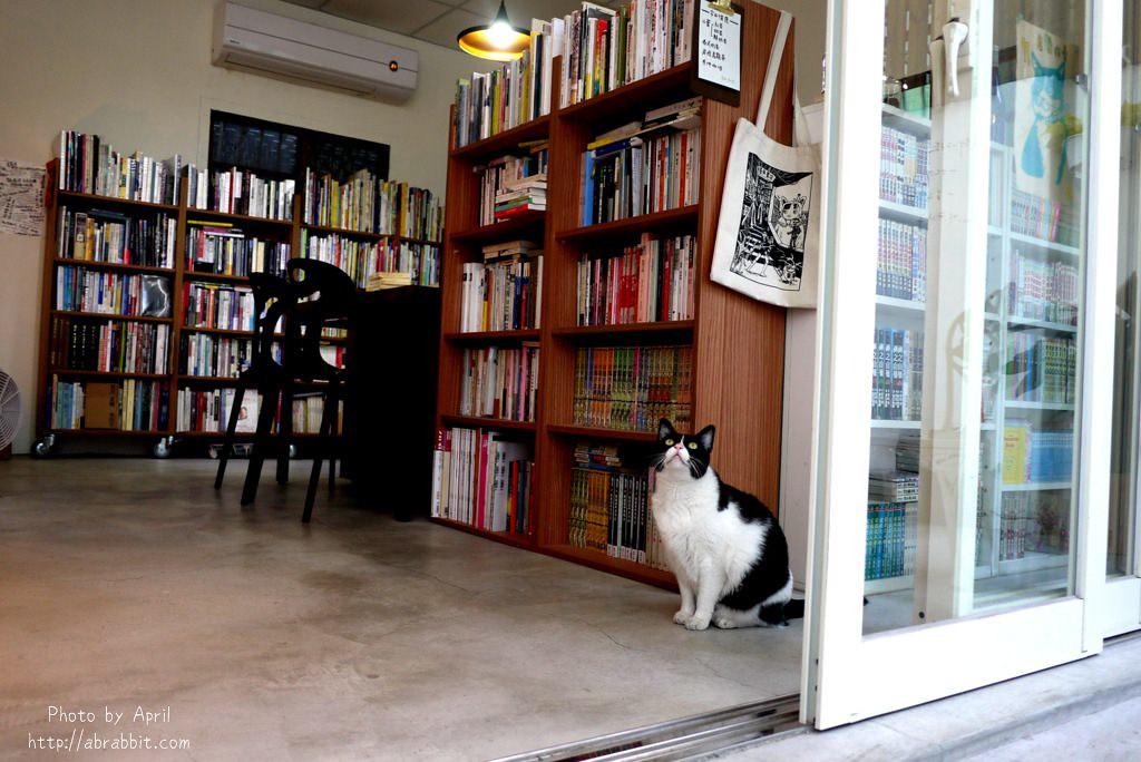 40788760221 e960f1e8fb b - 台中獨立書店|梓書房-二手書、咖啡,和貓咪一起看書吧!