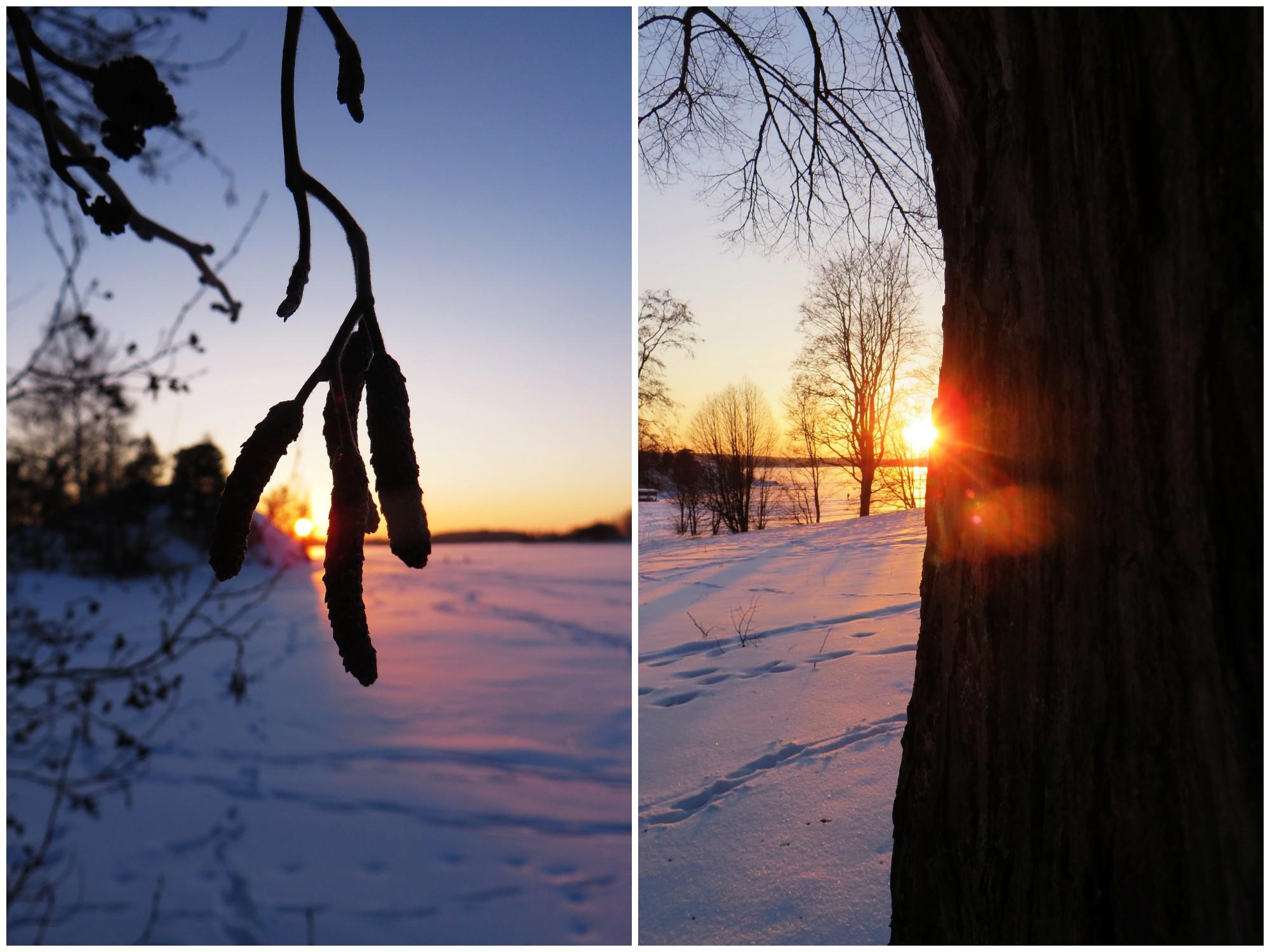 talvenkauneimmat11