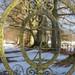 Arniston Beech Avenue Gates (105)