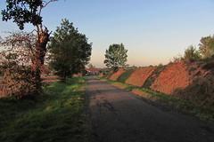 20120914 18 013 Jakobus Morgenrot Feld Bäume - Photo of Mérenvielle