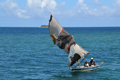 Recycling Labadee Haiti Style   Nikon D3100. DSC_0986.