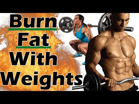 Workout Tips - Video  : How to BURN FAT with Weight Training for WEIGHT LOSS | How to lose fat with weights | Lifting  Workout Tips – Video  : How to BURN FAT with Weight Training for WEIGHT LOSS | How to lose fat with weights | Lifting 26036055457 708de4e495