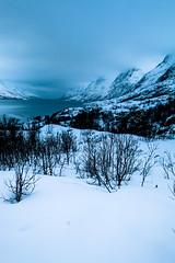 Ersfjordbotn, Troms