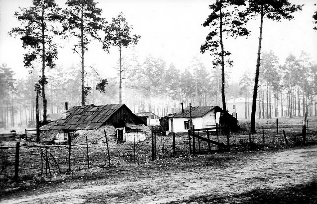 Землянки на Дарнице, 1950 год
