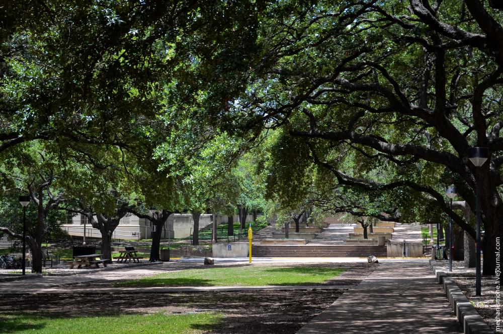 Техасский университет 13