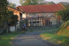 20120914 18 014 Jakobus Weg Häuser Farewell Pilger Gerard - Photo of Mérenvielle
