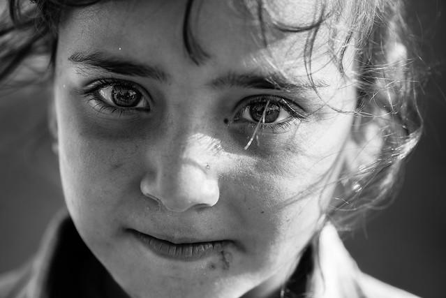 Yazidi eyes, Iraq war