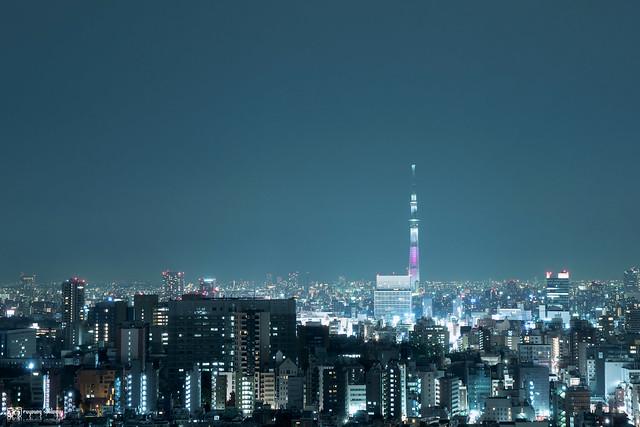 她說旅途若是卷底片 | 東京,72時 | 23