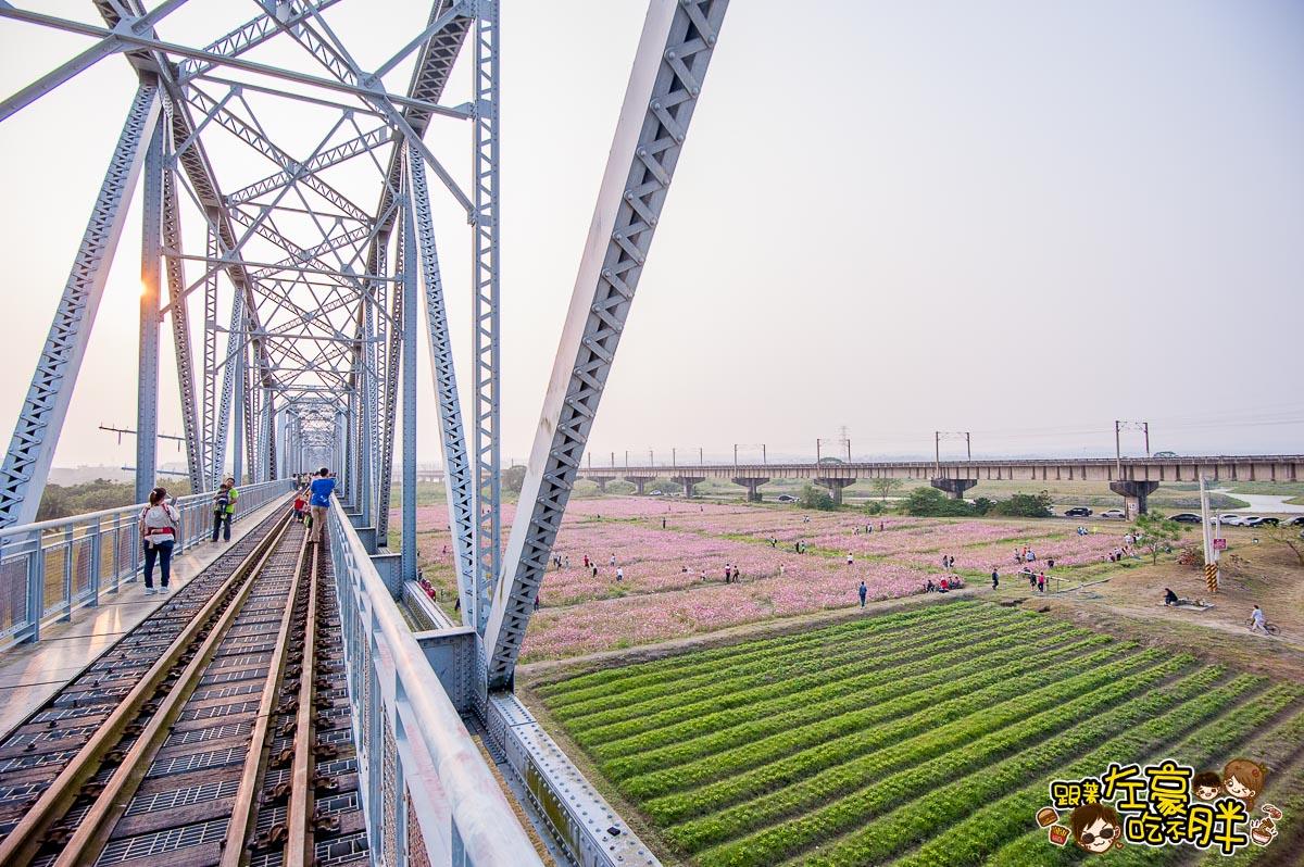 舊鐵橋(屏東端)花海-39