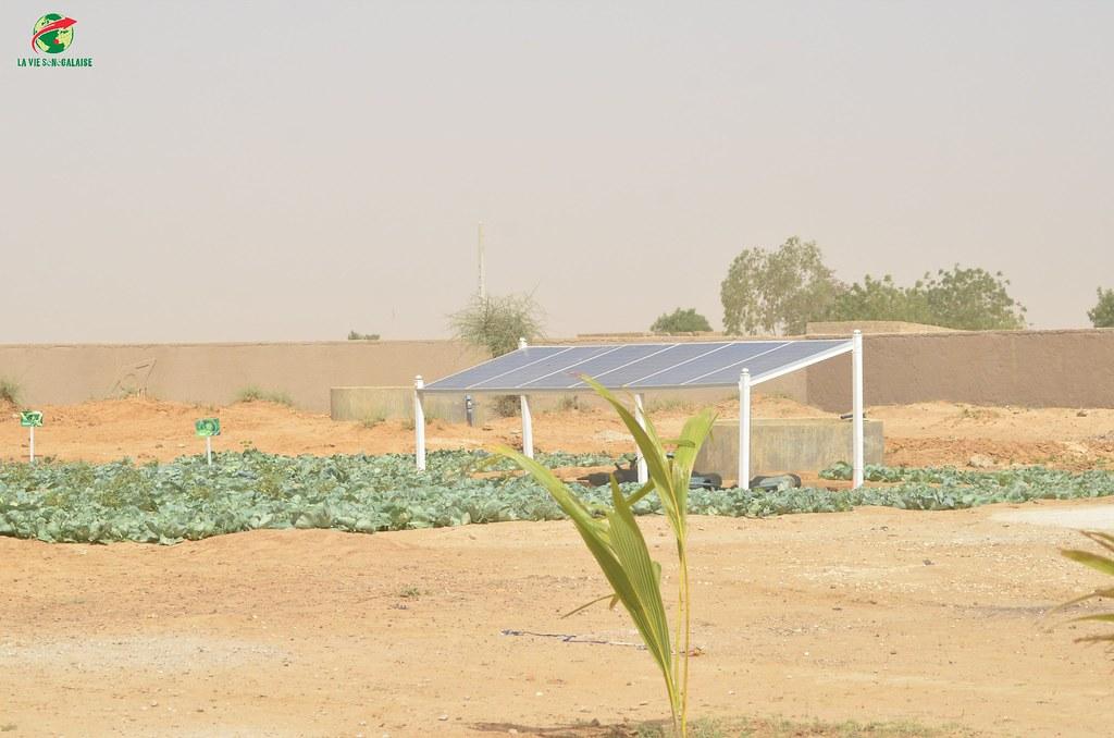Inauguration d'infrastructures  de base à Mbakhna Par la Fondation SONATEL (2)