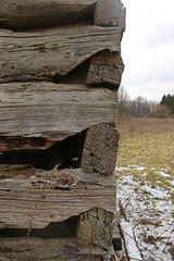 Notching, Park Log House (?) — Blendon Township, Franklin County, Ohio