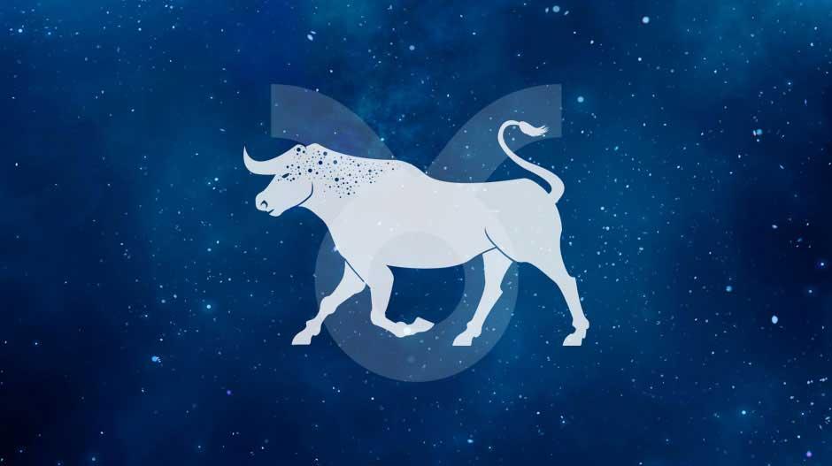 Horoskop partnerski Byk