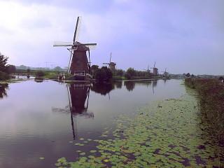Una veduta dei mulini di Kinderdijk