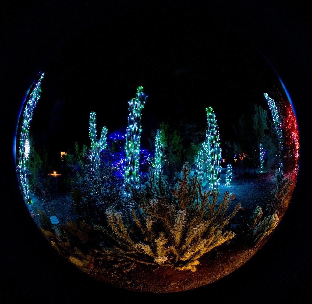 Lights_97