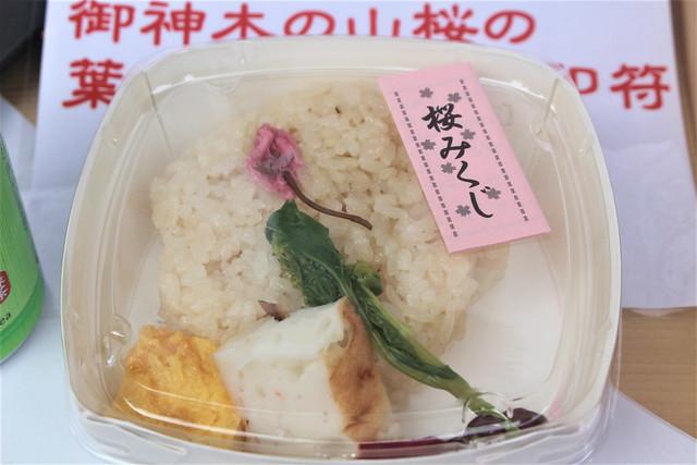 sakuragi-gosyuin03011