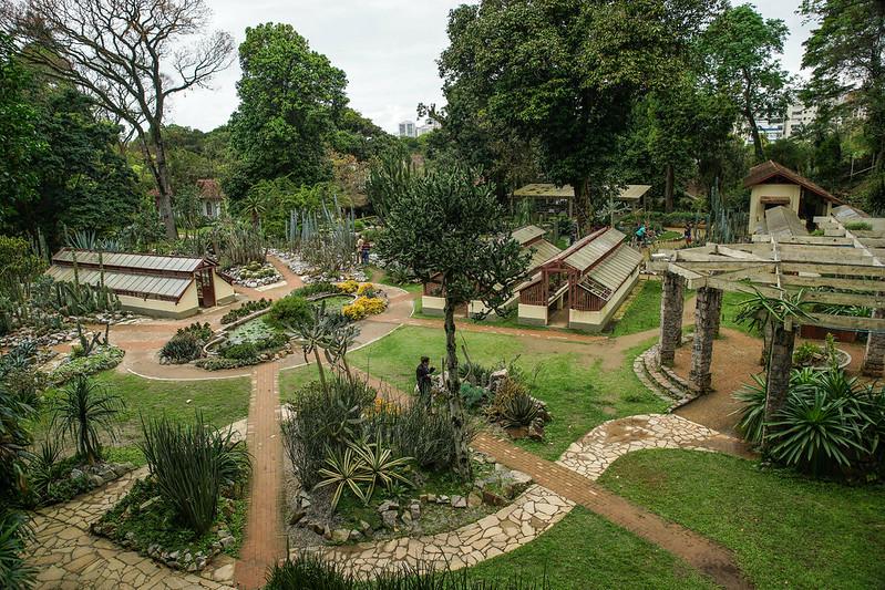 Jardim Botânico Brasilia Brazil Rio de Janeiro Botanical garden