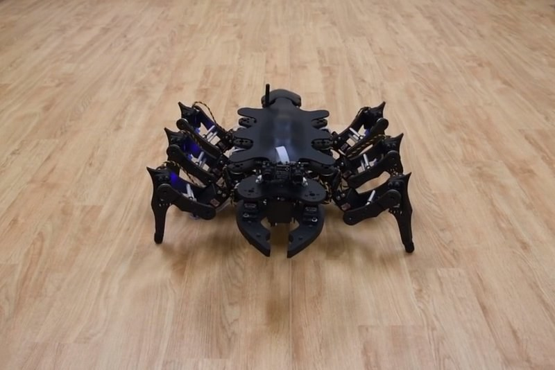 Ce robot insectoïde apprend à improviser afin de s'adapter à son environnement