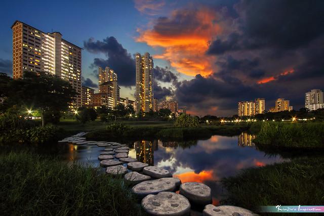 一個漆黑的夜晚 l A Dark Night at Bishan Park, Bishan-Ang Mo Kio Singapore. *Corners of Singapore*