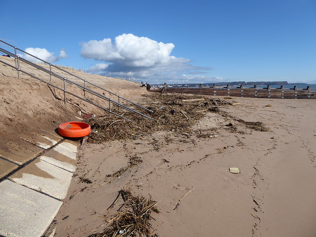Debris on Dawlish Warren Beach