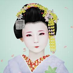 Minarai Kikushino