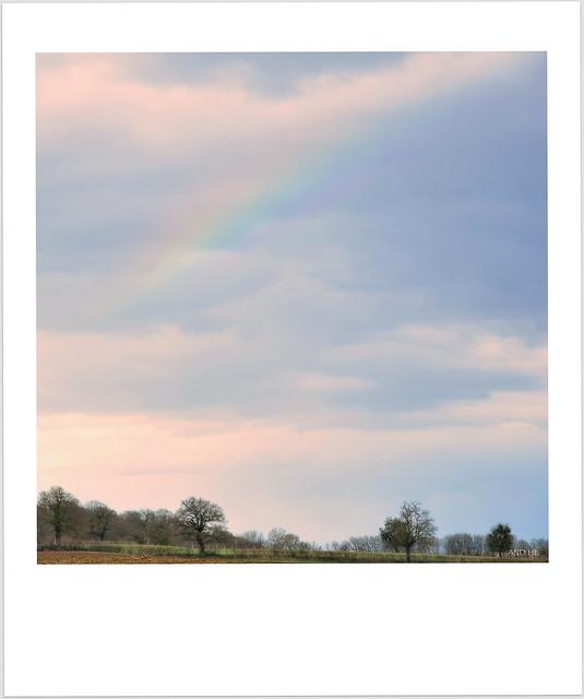 Celui qui veut voir l'arc-en-ciel doit apprendre à aimer la pluie.