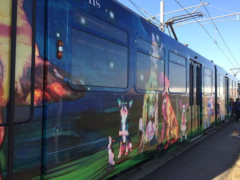 Sacramento Regional Transit Art
