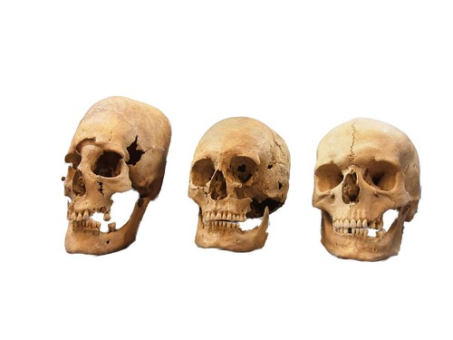 germanskulls2