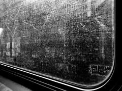 Grafitti View from NY Subway 4/5